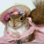 Squirrelly Girl's avatar