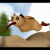 b-rabbit's avatar